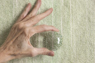 20110415095551-leavesofgrass-5327