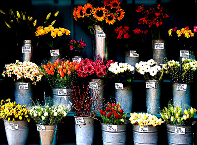 20110416140746-flowers_23