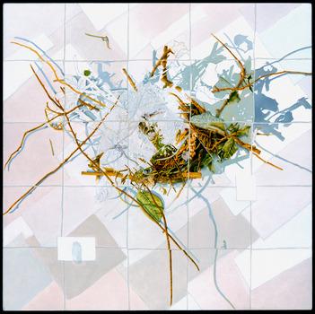 20110419140109-nest__2010__moline-kramer