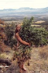 20110419153209-516_roberta_price_harvest__libre__huerfano_valley__colorado__fall_1972