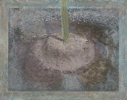 20110419154640-saguaro13x16