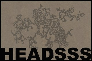 20110420215958-headssshow