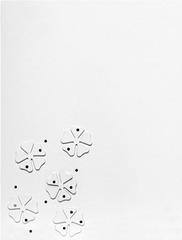 20110421103844-tuttle_six_nails