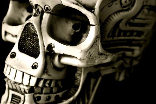 20110422140408-fishbone_skull