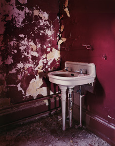 20110423072121-_red_sink