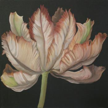 20110423151426-tulip-parrot