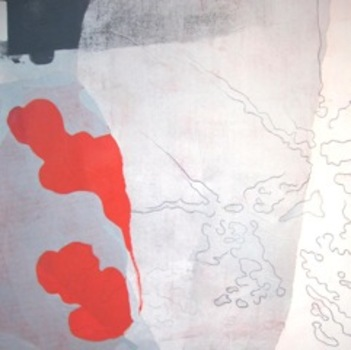 20110425063427-grisrouge2