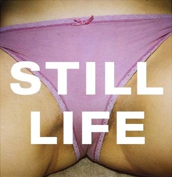 20110426110216-stilllife