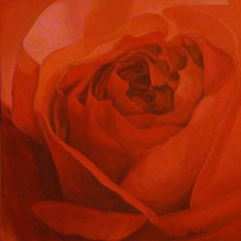 20110427085919-rose