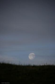 20110427224554-kelly-moonset01b