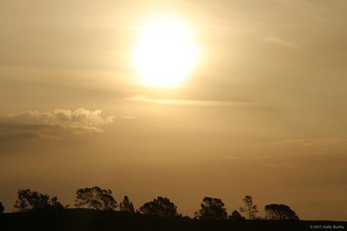 20110427225119-kpb-landscape01b