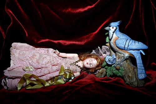 20110501084825-bluebird_pinklady