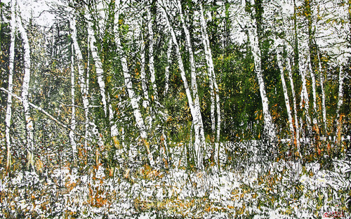 20110501162858-life_lines_through_the_forest_26x41