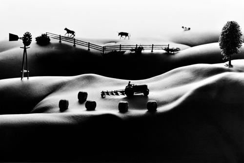 20110503000247-allan_teger__farmlands