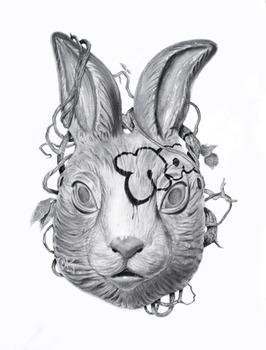 20110503174041-rabbits