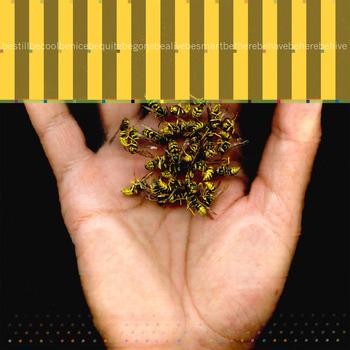 20110506164338-sm_wasp-2