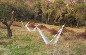 20110509172233-h-paradigm-_mountains