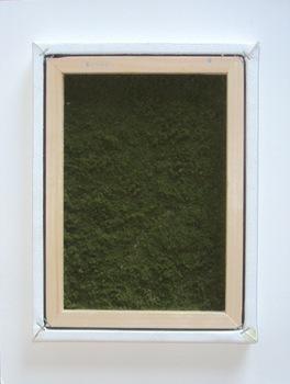 20110517095028-grassgreen