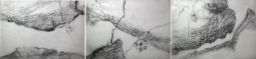20110517221958-continentaldrift-web
