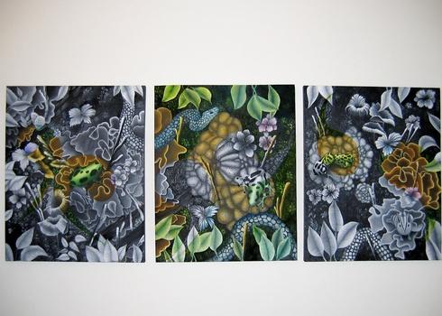 20110518122218-forest_floor