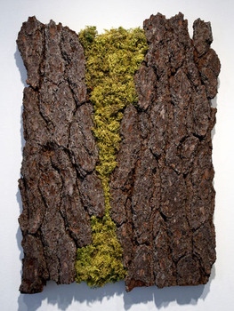 20110525062602-barkpainting-14