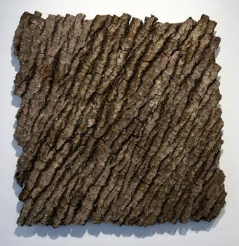 20110525063304-barkpainting-13