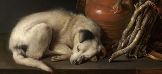 20110531075443-dog