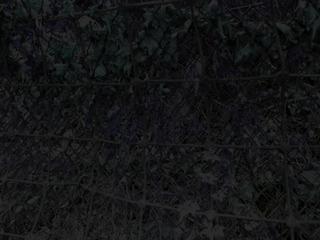 20110602133419-ddjenny2