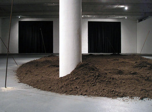 20110603165350-the_dark_light_and_something_in_the_bones__installation_view_i_