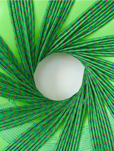 20110608142846-lowresdennis-koch_-noverlty-vortex-_green-and-green__-2011_-inner-tube-and-rope_-detail
