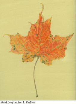 20110610101714-orange_leaf