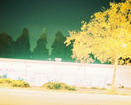 20110610135441-treelightbig