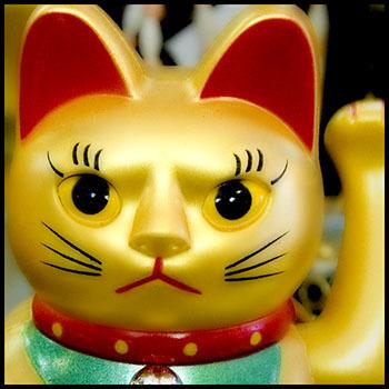 20110617145708-behr-01-goldcat272