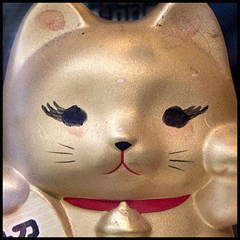 20110617150029-behr-03-goldcat068