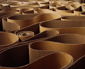 20110621024059-labirinto_365
