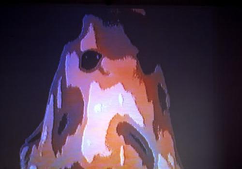 20110621071537-flaminghoods-01