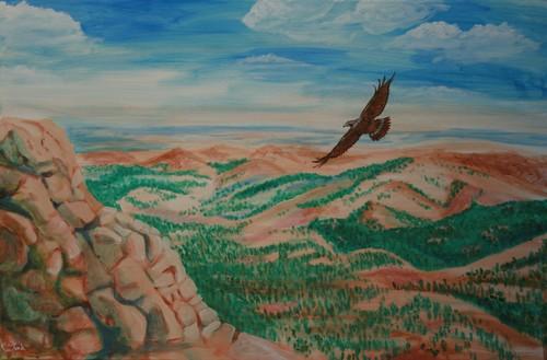 20110625105446-soaring_hawk