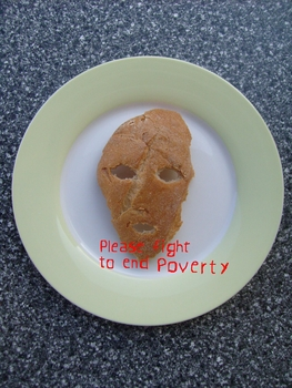 20110625133844-please_fight_to_end_poverty2008_2010