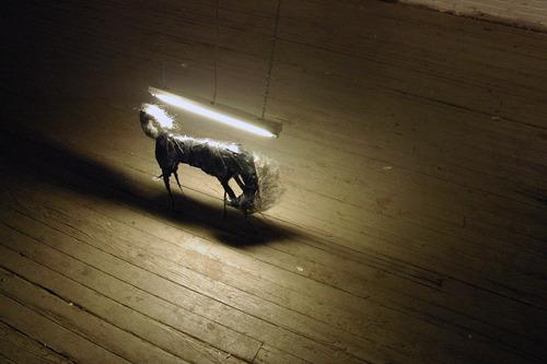 20110626234055-horse_a