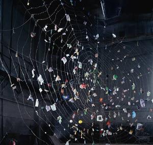 20110628150529-spider
