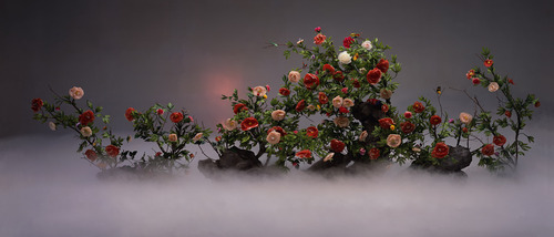 20110628151138-beauty