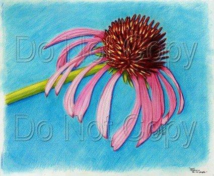 20110701111832-goodmedicine
