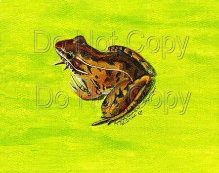 20110701121838-leapinleopard