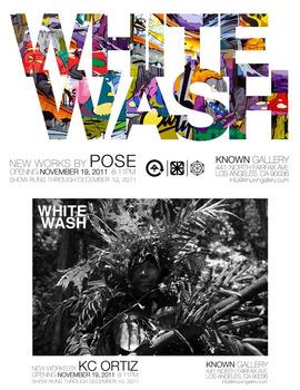 20111116111932-whitewash