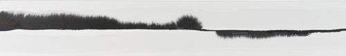 20110706123105-landscape
