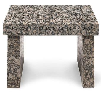 20110707084212-hol-0005-truism-footstool