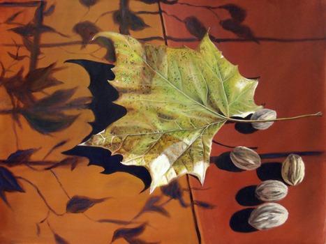 20110707113451-still_leaf