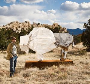 20110715124024-box_bisonmonument