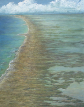 20110720201752-wetlands_5__outer_banks__acrylic_on_canvas_48_x_36