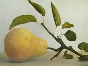 Single_pear